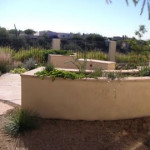 Raised planter wall at flagstone patio | 2008 ALCA Award of Excellence