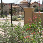 Custom ornamental iron gate at entry courtyard | 2010 Xeriscape Award