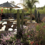 Colored stamped concrete patio in low maintenance desert garden | 2007 APLD Gold Award