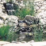 Living pond with waterfall and aquatic plants