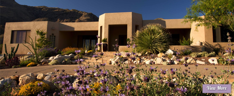 Xeriscapes for Sonoran Gardens of Tucson, Arizona