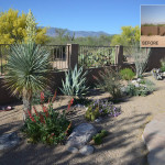 2011 Xeriscape Awards 2nd Place | Designer: Shelly Ann Abbott
