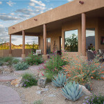 Winner of the Xeriscape Award