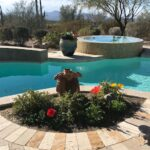 Winter poppies add color to a poolside planter bed.