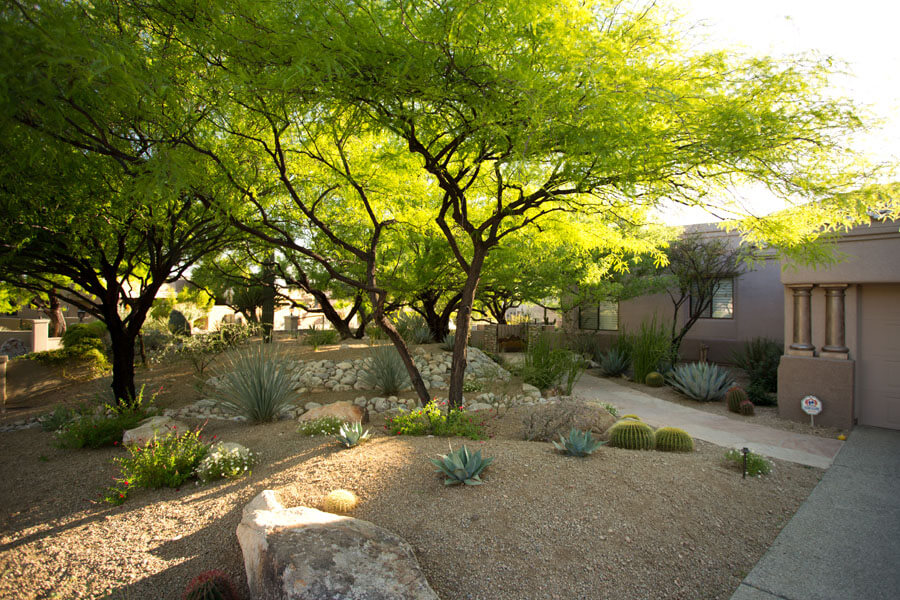 Experience an entirely different level of landscape maintenance with  Sonoran Gardens' Custom Care. - Custom Care Landscape Maintenance Sonoran Gardens, Inc.
