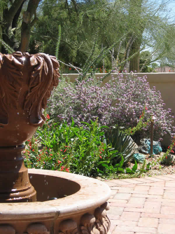 The Fosdick Residence Won 1st Place In 2010 For The Professional Landscape  Category In The Arizona