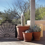 Custom ornamental iron gate with potted cacti