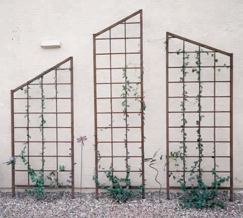 Retaining & Block Walls Tucson AZ