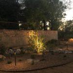 Garden space with desert plantings, berm, and custom lighting.