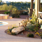 Brick paver patio | Landscape one year after redesign